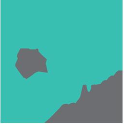 ArkaNoego